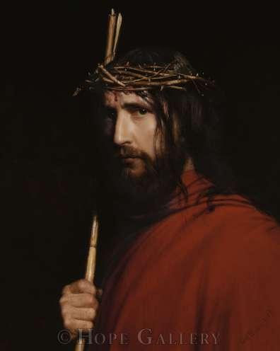 Espinas de Cristo