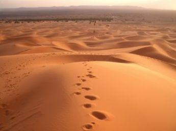 No tengas miedo al desierto...